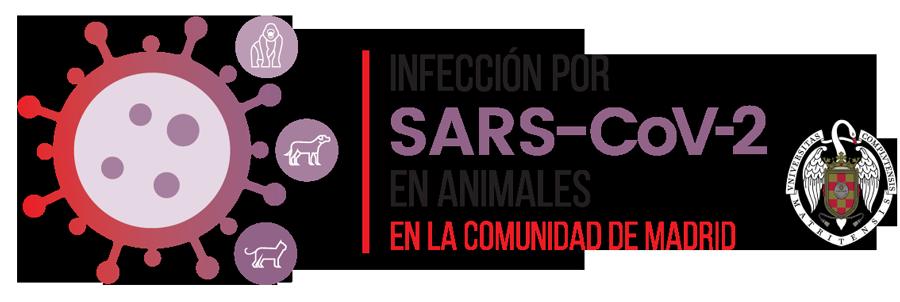 Infección por SARS-CoV-2 en Animales